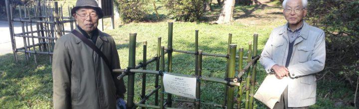 2015年11月29日 蘆花記念公園(逗子市)にカタルパの苗木を寄贈して植樹