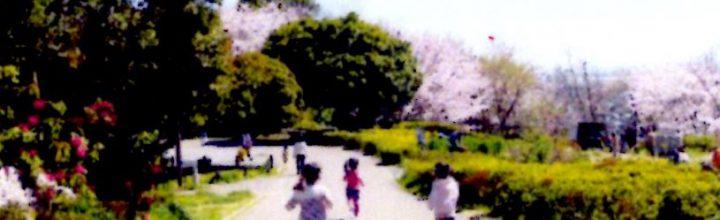2020年 3月 31日 KDSウォーキング(根岸森林公園と本牧山頂公園の緑と桜を訪ねて)のご案内